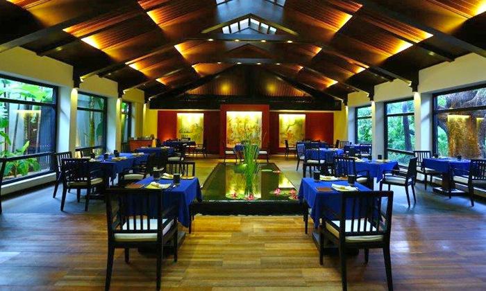 Rain Tree -Taj Connemara